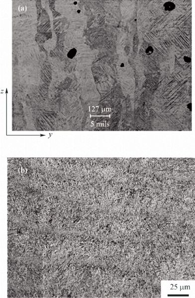 differences in microstructure and properties between